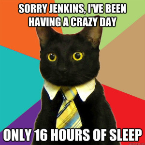 business_cat_1